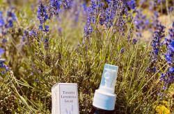 Lavender products: oil and water