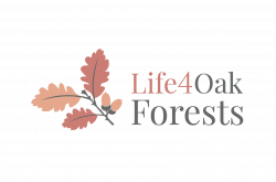 life4oakforests
